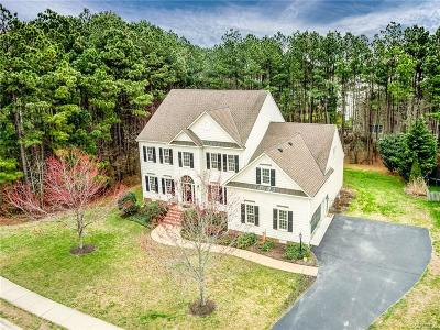 Henrico County Single Family Home For Sale: 11801 Shadow Run Drive