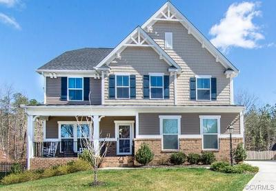 Chesterfield County Single Family Home For Sale: 16825 White Daisy Loop