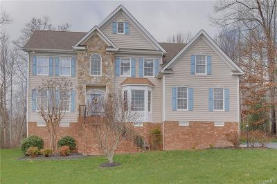 Hanover County Single Family Home For Sale: 6051 Turkey Hollow Place