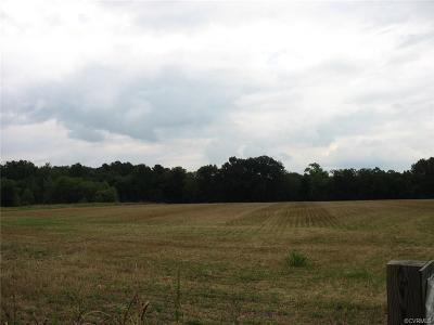 Hanover County Residential Lots & Land For Sale: 0000 Kings Dominion Boulevard