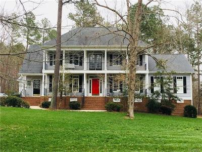 Chesterfield Single Family Home For Sale: 13606 Blue Heron Circle