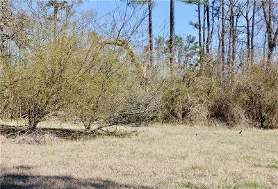 Hanover County Single Family Home For Sale: 10396 Cedar Lane