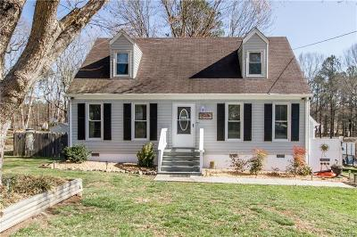 Chesterfield County Single Family Home For Sale: 17813 Willowynde Road