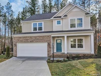 Chesterfield County Single Family Home For Sale: 17413 Stafford Park Court