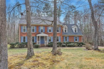 Chesterfield County Single Family Home For Sale: 8701 Waterfowl Flyway