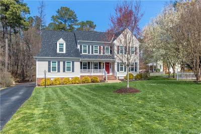 Henrico County Single Family Home For Sale: 2317 Eagles View Terrace