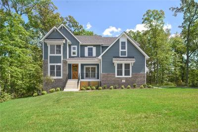 Henrico County Single Family Home For Sale: 10716 Balvis Hollow Court