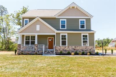 Henrico Single Family Home For Sale: 9609 Big Tree Lane