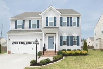 Ashland Single Family Home For Sale: 13709 Winston Trail Circle