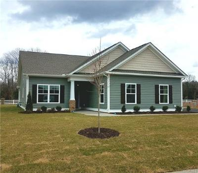 Goochland County Single Family Home For Sale: 2761 Perkinsville Road