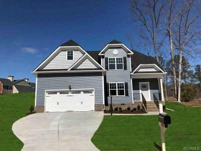 Chester Single Family Home For Sale: 4200 Wells Ridge Court