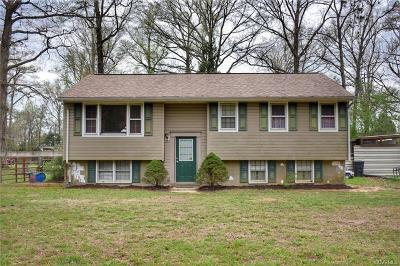 New Kent Single Family Home For Sale: 8000 North Henpeck Road