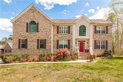 Chesterfield Single Family Home For Sale: 12151 Second Branch Road