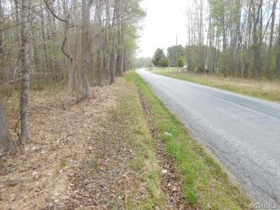 Sussex County Land For Sale: 630 Route Little Mile Road