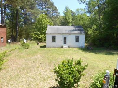 Sussex County Single Family Home For Sale: 23287 S Halifax Road