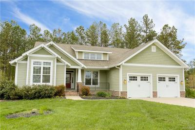 Chesterfield Single Family Home For Sale: 8406 Putford Court