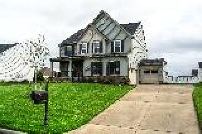 Chester Single Family Home For Sale: 12049 Winbolt Drive
