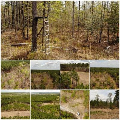 Sussex County Land For Sale: Lot 30 Concord Sappony Road