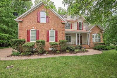 Colonial Heights Single Family Home For Sale: 107 Creek Point Ct