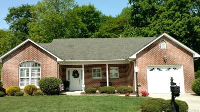 Hopewell Single Family Home For Sale: 509 Cobblestone Drive