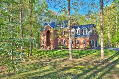 Powhatan County Single Family Home For Sale: 1623 Fallen Timber Trail