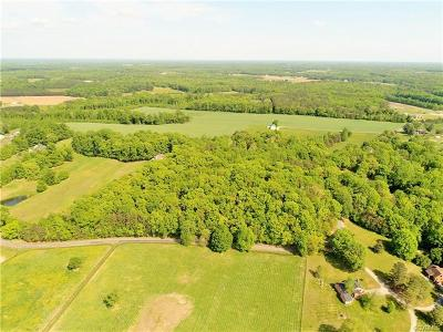 Ashland Residential Lots & Land For Sale: 14200 Horseshoe Bridge Road