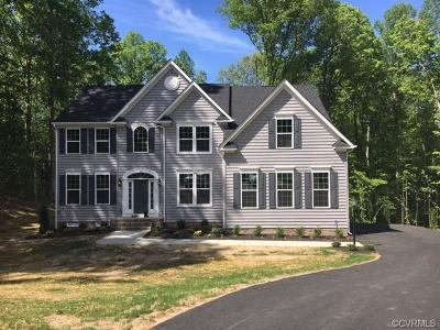 Chesterfield Single Family Home For Sale: 11001 Thetis Place