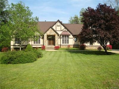 Mineral VA Single Family Home For Sale: $1,399,000