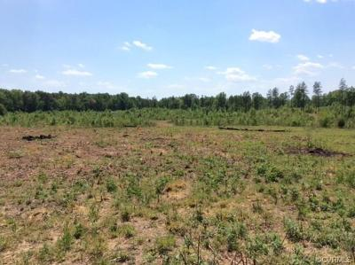 Powhatan County Residential Lots & Land For Sale: 2885 Crews Lane