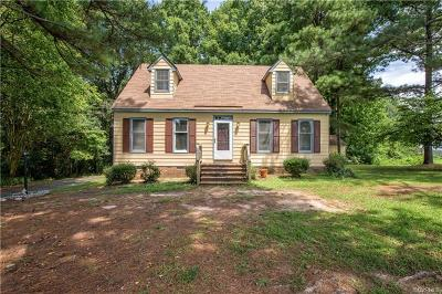 Dinwiddie Single Family Home For Sale: 18200 Bonneville Lane