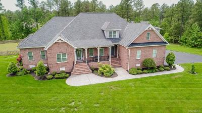 Hanover County Single Family Home For Sale: 4799 Leaf Lane