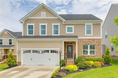 Hanover County Single Family Home For Sale: 9023 Annex Lane