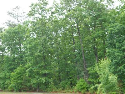 Dinwiddie County Residential Lots & Land For Sale: 22231 Butterwood Road