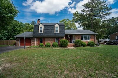 Hanover County Single Family Home For Sale: 8218 Greenview Road