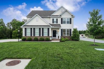Chesterfield County Single Family Home For Sale: 14500 Needham Market Road