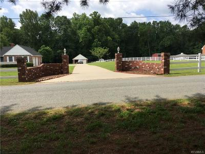 Hanover County Single Family Home For Sale: 6411 Pine Slash Road