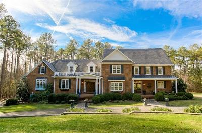 Goochland County Single Family Home For Sale: 361 Holly Lake Drive