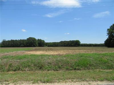Sussex County Land For Sale: 86-A-45 Dillard Road