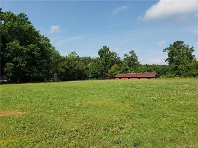 Sussex County Land For Sale: 23494 Blue Star Highway