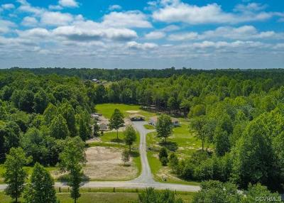 Louisa Single Family Home For Sale: 4137 Hidden Acres Drive