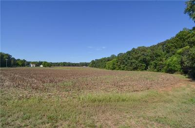 Powhatan County Residential Lots & Land For Sale: 4200 Three Bridge Road
