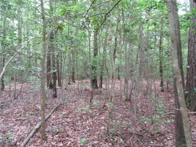 Dinwiddie County Residential Lots & Land For Sale: 4.79 Acres McKenney Highway