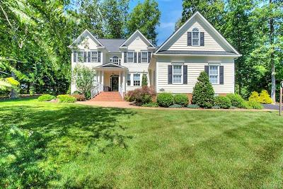 Hanover County Single Family Home For Sale: 14401 Riverside Drive