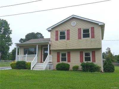 Dinwiddie Single Family Home For Sale: 24003 Mark Drive
