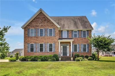 Chester Single Family Home For Sale: 1607 White Mountain Drive