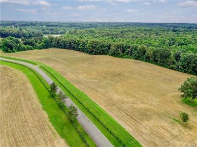 Hanover County Residential Lots & Land For Sale: 12418 Walnut Hill Drive