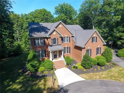 Powhatan County Single Family Home For Sale: 3591 Archers Hill