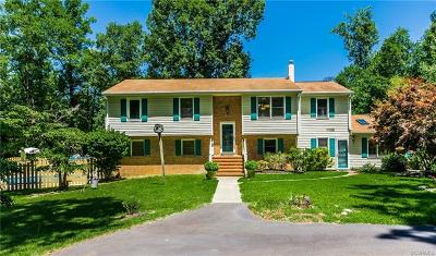South Chesterfield Single Family Home For Sale: 17909 Sandy Ford Road