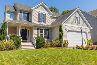 Hanover County Single Family Home For Sale: 11374 Old Scotland Road