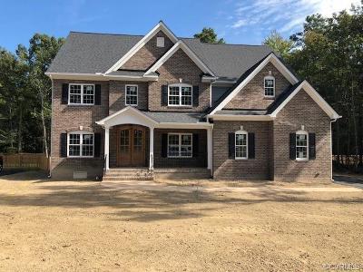 Glen Allen Single Family Home For Sale: 11060 Ellis Meadows Lane